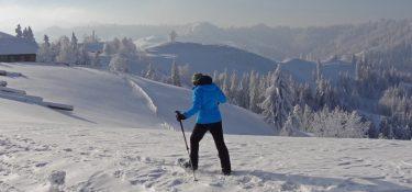 Schneeschuhlaufen 1223 Bearbeitet 1