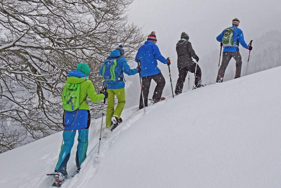 Schneeschuh 4046